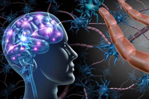 układ nerwowy przy stwardnieniu rozsianym